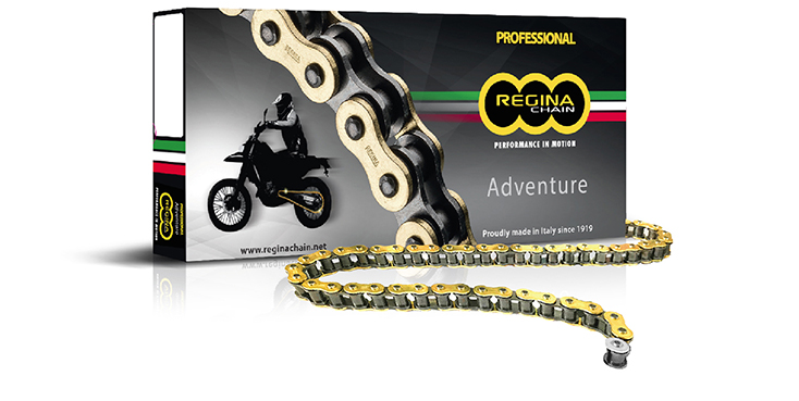Regina 135ZRE//100 520ZRE-100 DL Gold Chain